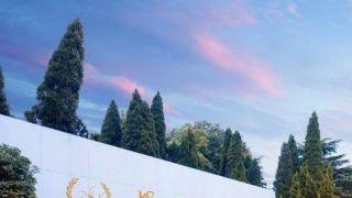 扬子江药业集团实施垄断行为 被罚¥7.64亿